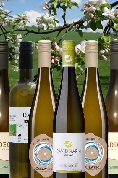 """Probierpaket Deutsche und Österreichische Weine """"Das kleine Weiße"""""""