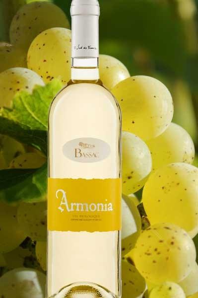 Armonia blanc Domaine Bassac