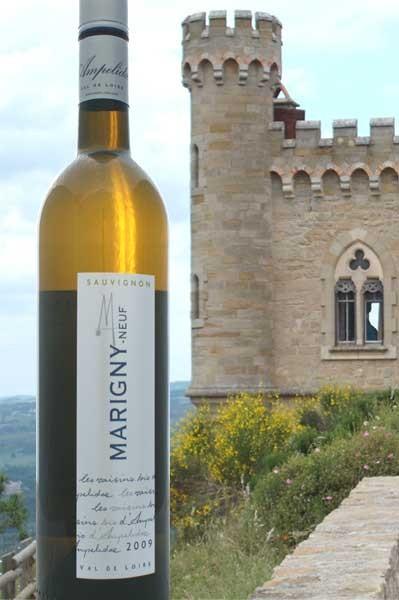 Sauvignon blanc Marigny- neuf Val du Loire Ampelidae