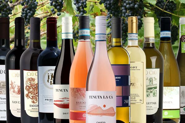 """Wein Probiepaket Italien """"Grande Diversità"""""""