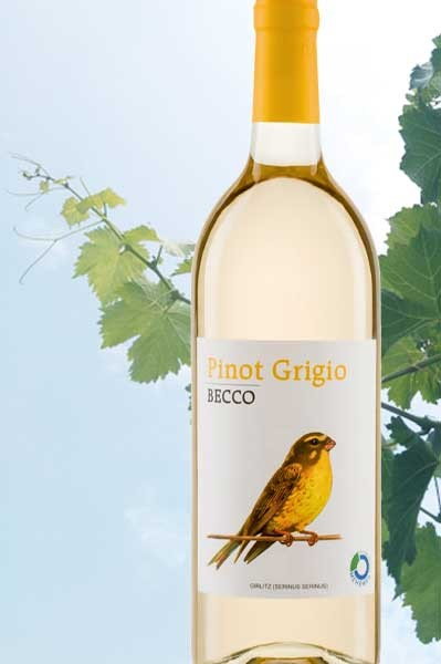 Pinot Grigio Becco