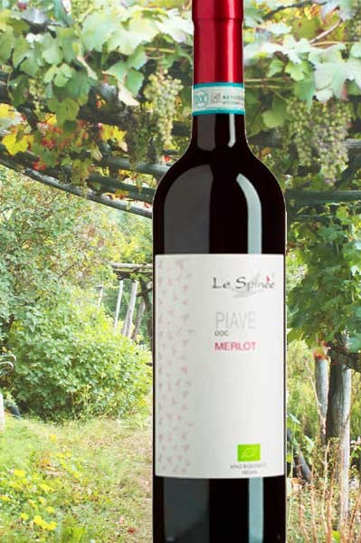 Merlot Piave Durante Le Spinee