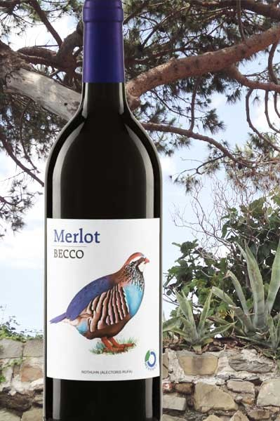 Merlot Becco