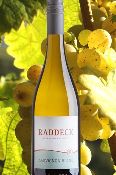 Sauvignon blanc Raddeck