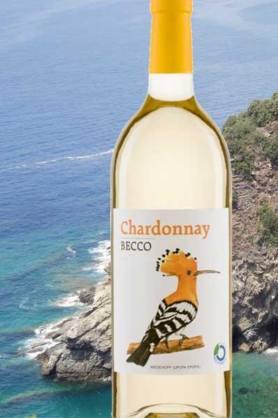 Chardonnay Becco