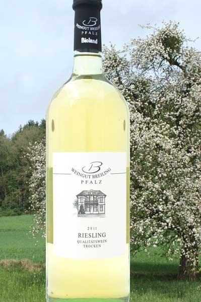 Riesling Breiling
