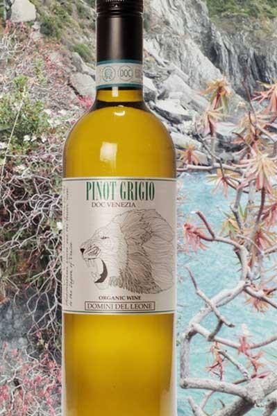 Pinot Grigio Domini del Leone Fidora