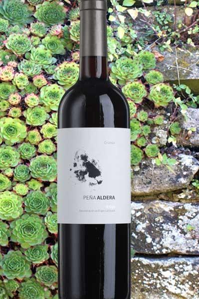 Rioja Crianza Pena Aldera Bodegas Jalon
