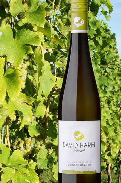 Grüner Veltliner Weinschwärmer David Harm